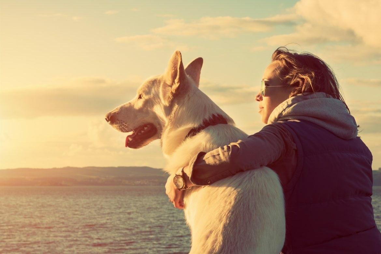 En Hund och en kvinna sitter på en strand vid havet och tittar på en solnedgång.