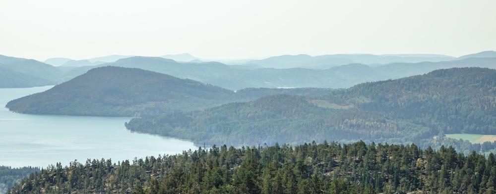 Berg, Hav och Skog i Höga Kusten