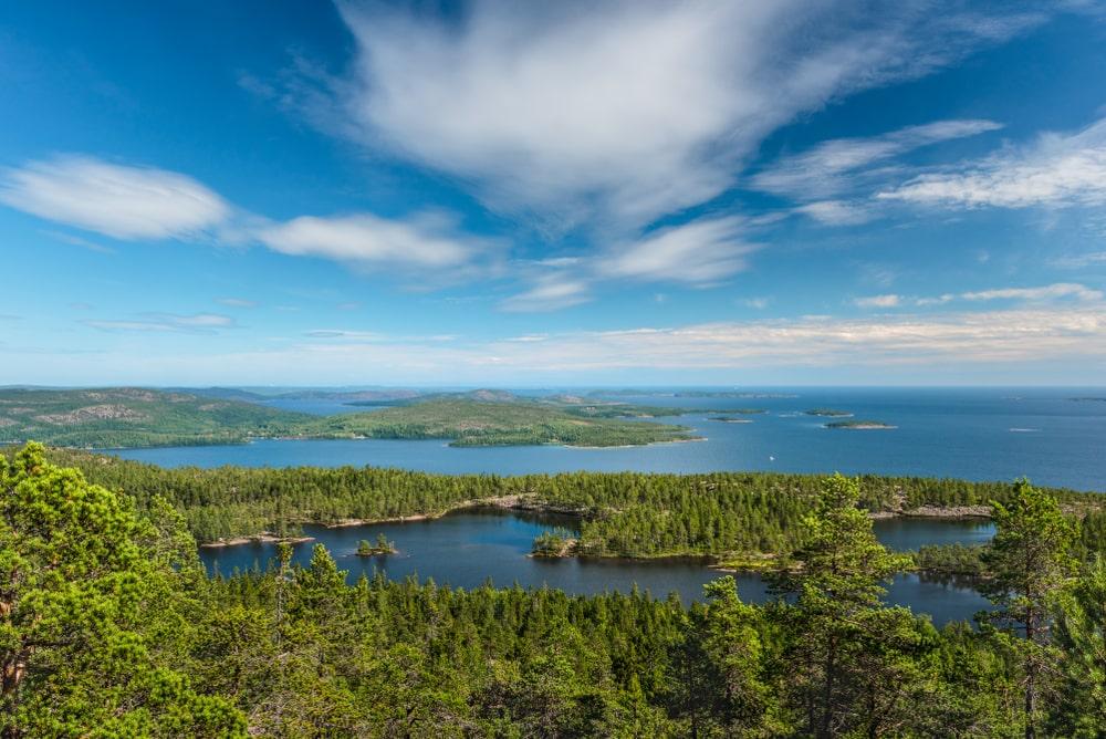 Höga kusten från ett berg. Man ser hav och skog i en vacker sommardag.